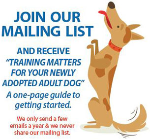 Join Senior Dog Rescue of Oregon's mailing list